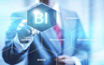 Business Intelligence usage in Retail Organizations